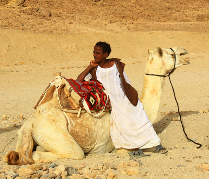 Ababda boy and white camel