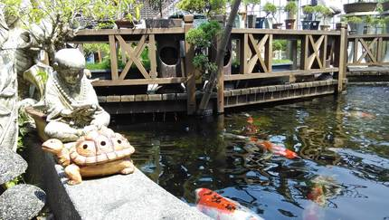 Chinese Koi Pond